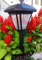 Solar Outdoor Landscape Plastic Pathway Light