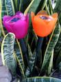 2-Pk Plastic Solar Powered Tulip Lights