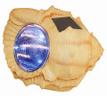 Solar Powered Seashell Spotlight 4 Super Bright WHITE LEDs