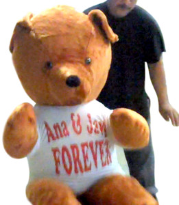 Create Your Own Personalized T-Shirt - and We Will Dress-Up Your Stuffed Animal so that it is Wearing the T-Shirt that You Customized