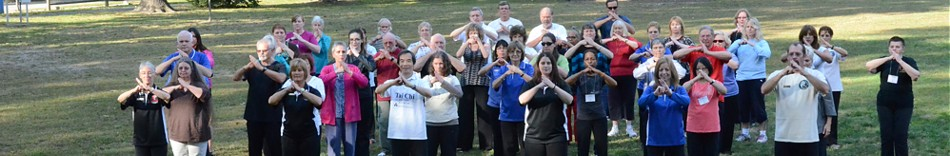 10-dr-paul-lam-and-friends-at-toledo-tai-chi-workshop-2013.jpg