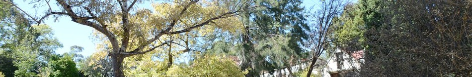 4.-the-mortsavat-at-western-australia-an-artist-community.jpg