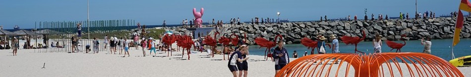 7-tai-chi-with-sculptures-in-the-beach-of-western-australia.jpg