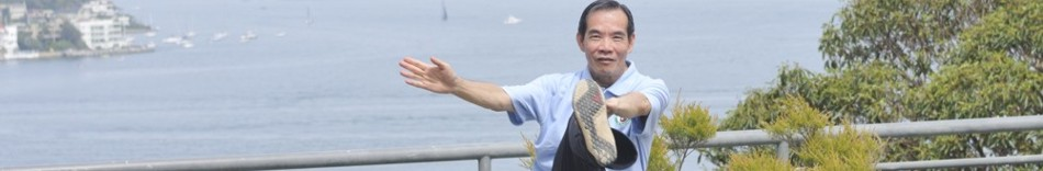 9.-dr-paul-lam-at-17th-annual-tai-chi-workshop-in-sydney-jan-2015.jpg