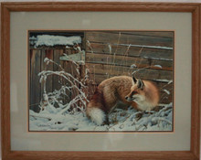 """Shed Door Fox"" by Nancy Glazier"