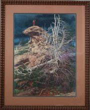 """Eagle Rock"" by Bev Doolittle"