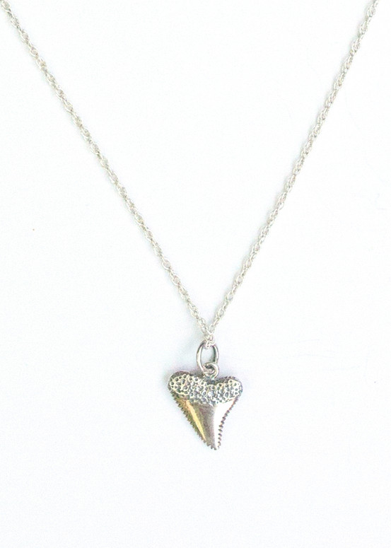 Shark's Tooth Necklace- Silver