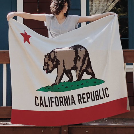 California Flag Decor