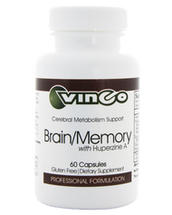 Brain / Memory by Vinco