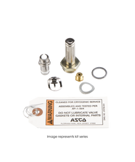 ASCO Rebuild Kit 304062