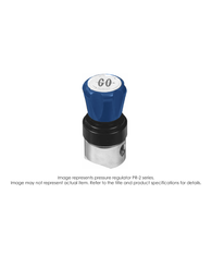 PR2 Pressure Regulator, Single Stage, Brass, 0-500 PSIG PR2-2L41AHJ31J
