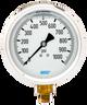 WIKA Type 213.53 Utility Pressure Gauge 0-1000 PSI 9699185