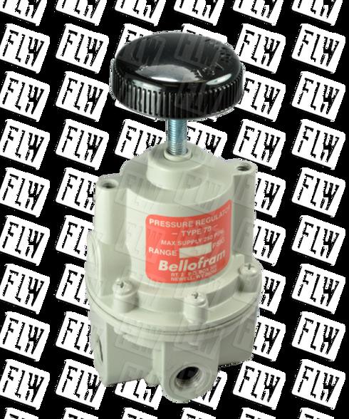 "Bellofram Type 70 High Flow Air Pressure Regulator, 1/2"" NPT, 0-2 PSI, 960-162-000"