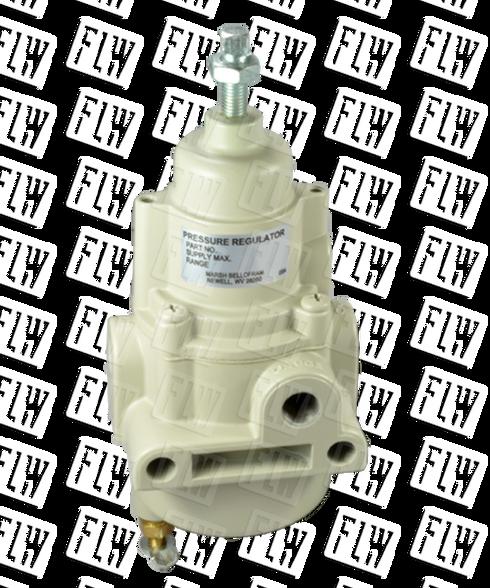"""Bellofram Type 50 NACE Filter Regulator, 1/4"""" NPT, 0-120 PSI, 960-302-000"""