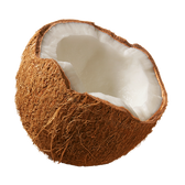 Coconut Flavor Concentrate Aussie