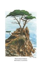 Lone Cypress - Monterey, California