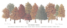 Southern Trees LE - Unframed 27x12	(retail $40.00)