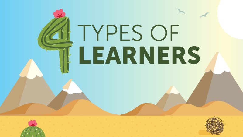 4 Types of Learners in Education