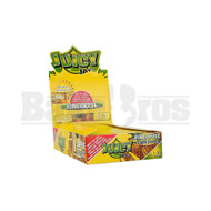 PINEAPPLE Pack of 24
