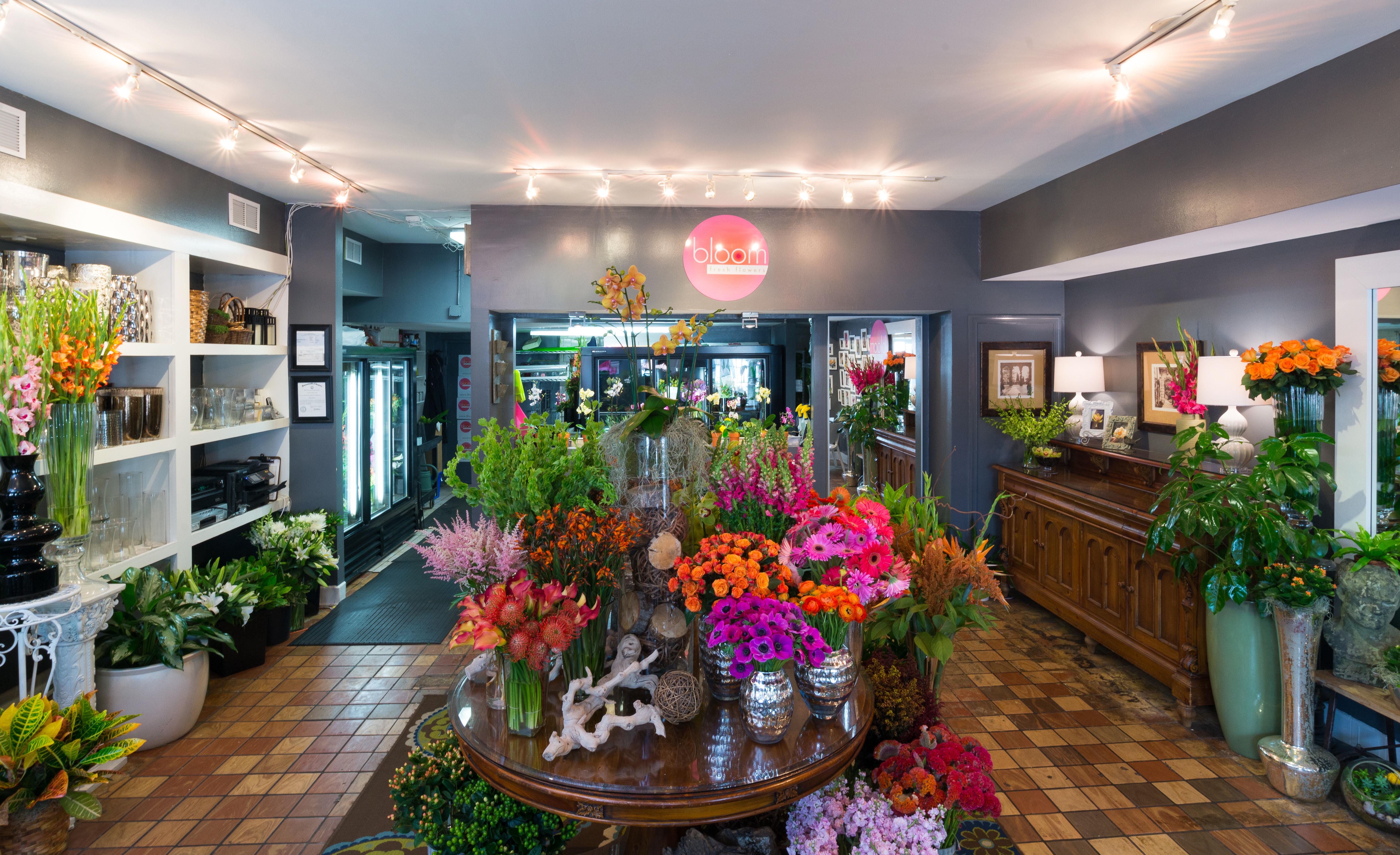 About Bloom Fresh Flowers In Alexandria Va 22314
