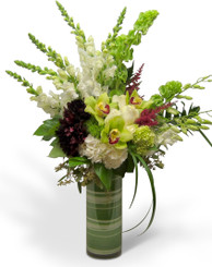 Dylan, exclusively for Alexandria's Artisan Florist