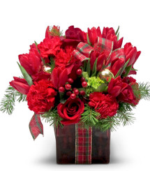 Gift of Red