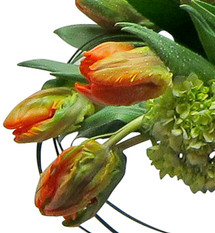 Fresh Pick of the Day - Mixed Tulip Bouquet