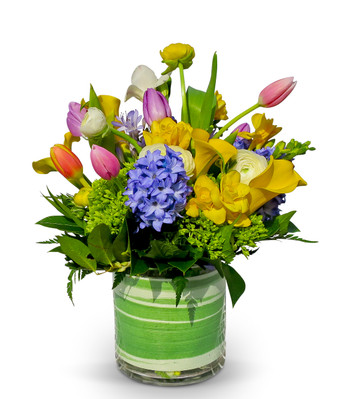 Alexandria's Artisan Florisit bouquet with green hydrangea, yellow freesia, calla lilies, white ranunculus, multi-color tulips and fragrant blue hyacinth,