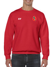 Harborne Hockey Club Adult Round Neck Jumper