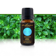 BASIL ESSENTIAL OIL (SWEET) - of 100% Proven Purity - Most Popular for Sinus and Muscle Pain, plus Stress Relief