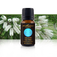 TEA TREE ESSENTIAL OIL (MELALEUCA) - of 100% Proven Purity - Promotes a Healthy Immune System, Skin Cleansing and Rejuvenating Effects
