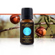 Premium Sandalwood Oil, 15 ml-100% Pure Blend Essential Oils | DeSensua