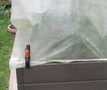 hold garden cover in place with clamp, landscape pin, or heavy object such as rock