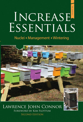 increase essentials 2nd edition ie2 blueskybeesupplycom