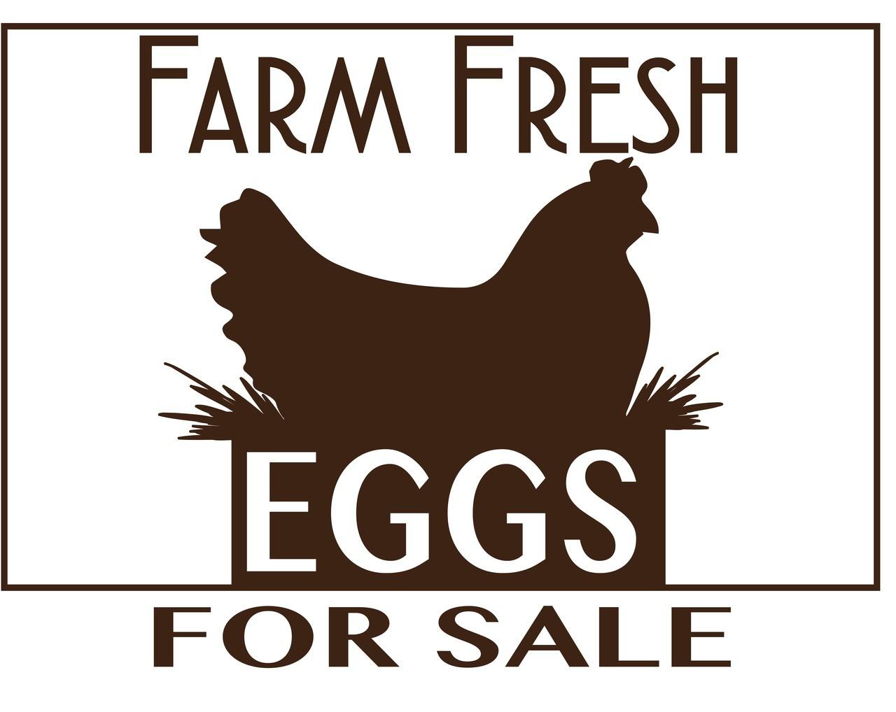Fresh Eggs For Sale Sign Pl 1 Blueskybeesupply Com
