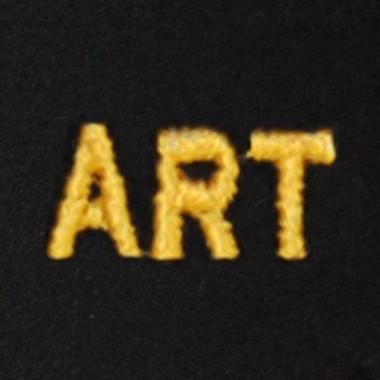 Art Embroidered Swiss Insert