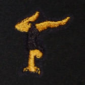 Gymnast Embroidered Swiss Insert