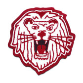 Lion Mascot 4