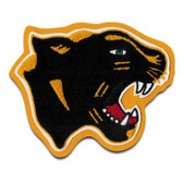 Panther Mascot / Cougar Mascot 1