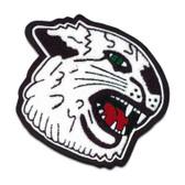 Wildcat Mascot 9