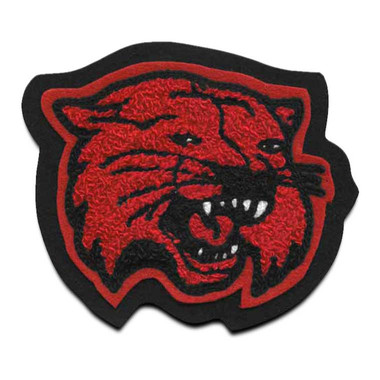 Wildcat Mascot 15