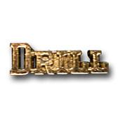 Drill Team Varsity Letter Pins