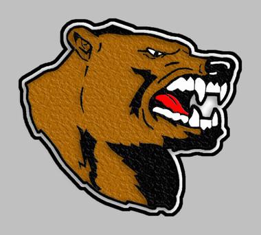 Bear Mascot 9