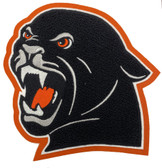 Panther Mascot 15