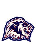 Lion Mascot 8