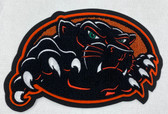 Panther Mascot 16