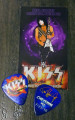 KISS Hottest Show on Earth Cheyenne 072310 Paul Stanley Guitar Pick