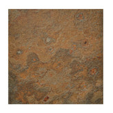 TrafficMaster Allure, Cyprus Resilient Vinyl Tile - Flooring Sample 4 Inch x 8 Inch