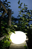 Flatball Outdoor Accent With Wireless LED Light By Smart And Green