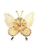 Jones New York Pin Boxed Cry Butterfly - Gold/Crystal